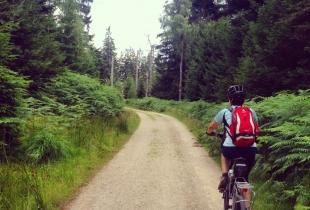 pedaleando-por-la-selva-negra-5245