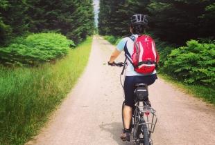 pedaleando-por-la-selva-negra-5246
