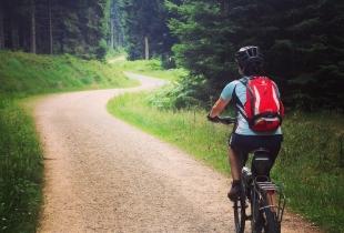 pedaleando-por-la-selva-negra-5247