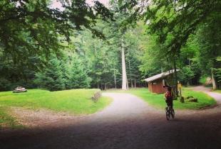 pedaleando-por-la-selva-negra-5248