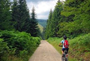 pedaleando-por-la-selva-negra-5249
