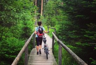 pedaleando-por-la-selva-negra-5254
