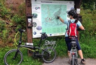pedaleando-por-la-selva-negra-5255