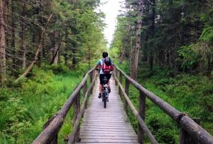 pedaleando-por-la-selva-negra-5257