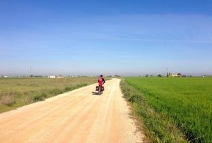 ruta don quijote 2014 - 5 de 252