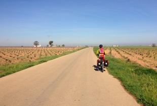 ruta don quijote 2014 - 7 de 252