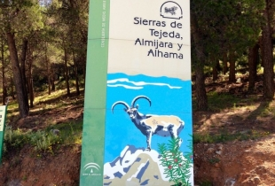 sierra tejeda - almijara y alhama - mayo 2013 - 1 de 61