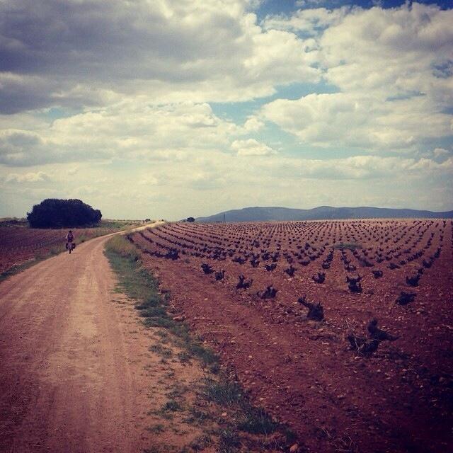 De Malagón a Villarta de San Juan, Ruta de Don Quijote en bicicleta