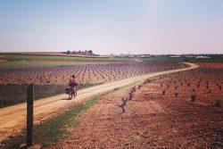 Desde Tomelloso, ¿La Ruta de Don Quijote en verano?