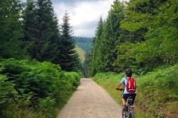 Pedaleando por la Selva Negra (Alemania)