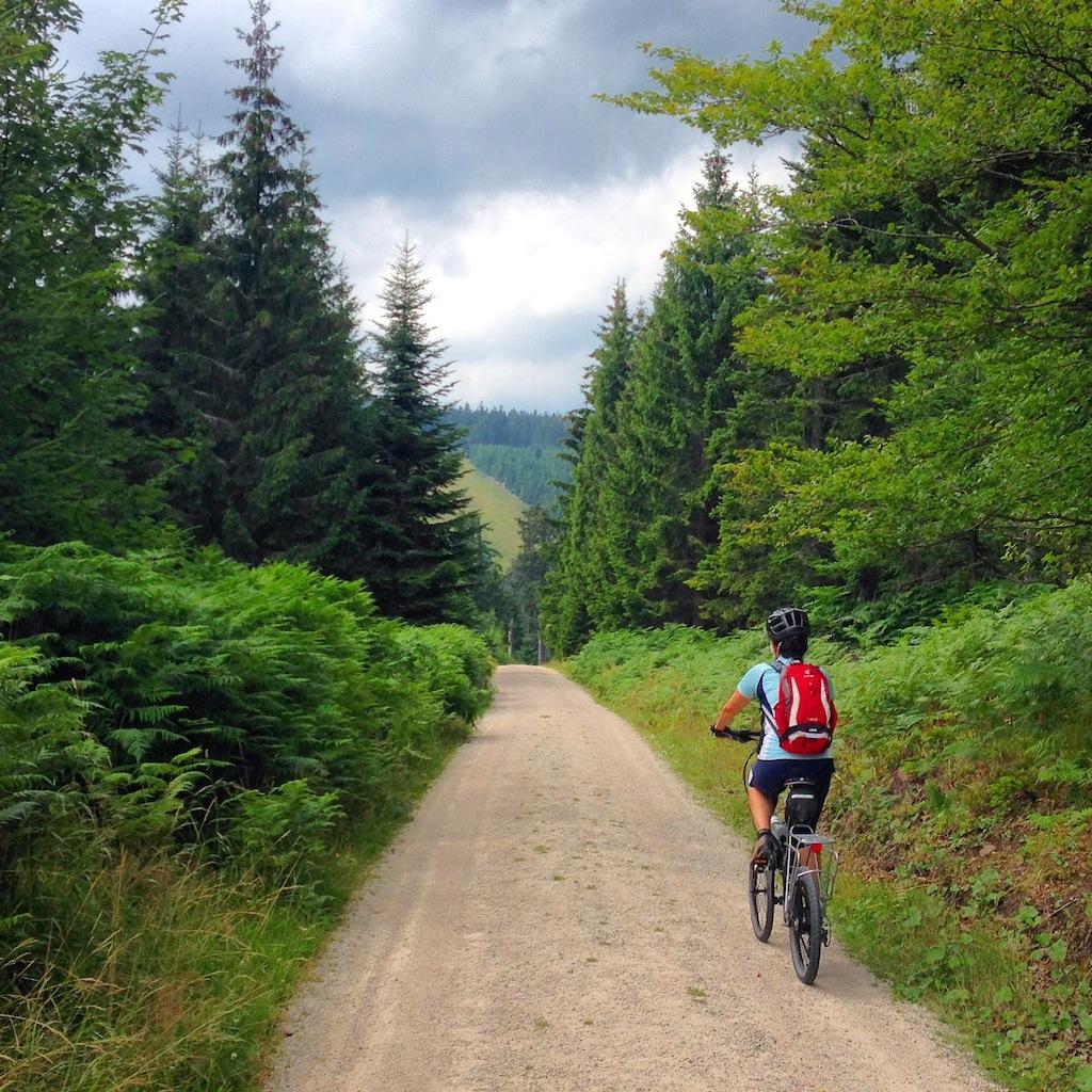 Ruta en bicicleta por la Selva Negra