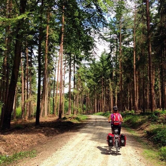 Pedaleando por los bosques alemanes.