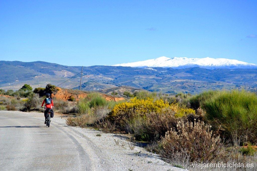 Poniente Granadino: Por la SO-15 camino de Arenas del Rey con Sierra Nevada de fondo.
