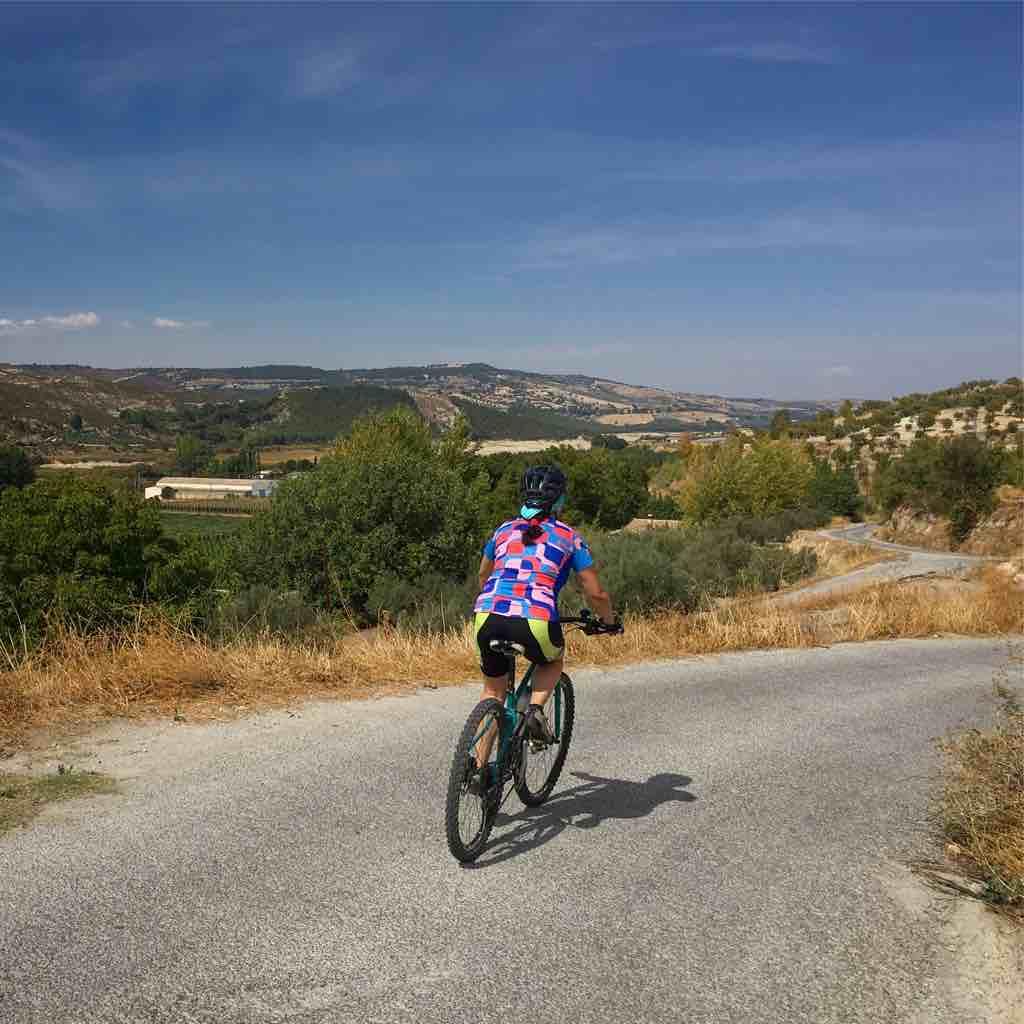 Ruta en bicicleta por los Bermejales